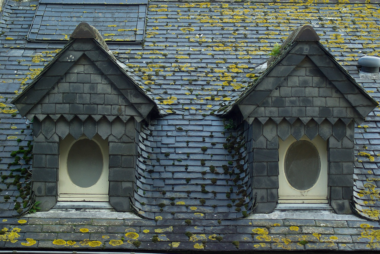 an image of two roof windows to show our customers how to know when your home needs roof repairs from expert roofers