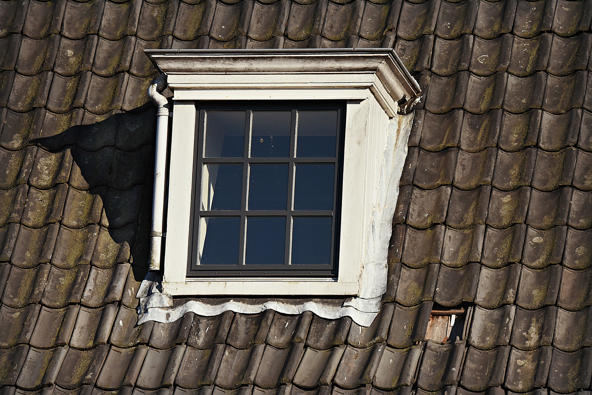An image of roof shingles and a window.